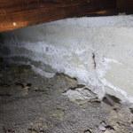 床下によくある基礎の劣化
